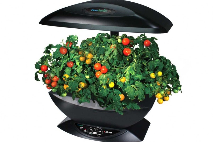 jardin d int rieur aerogarden innovmania aerogarden a roponie. Black Bedroom Furniture Sets. Home Design Ideas