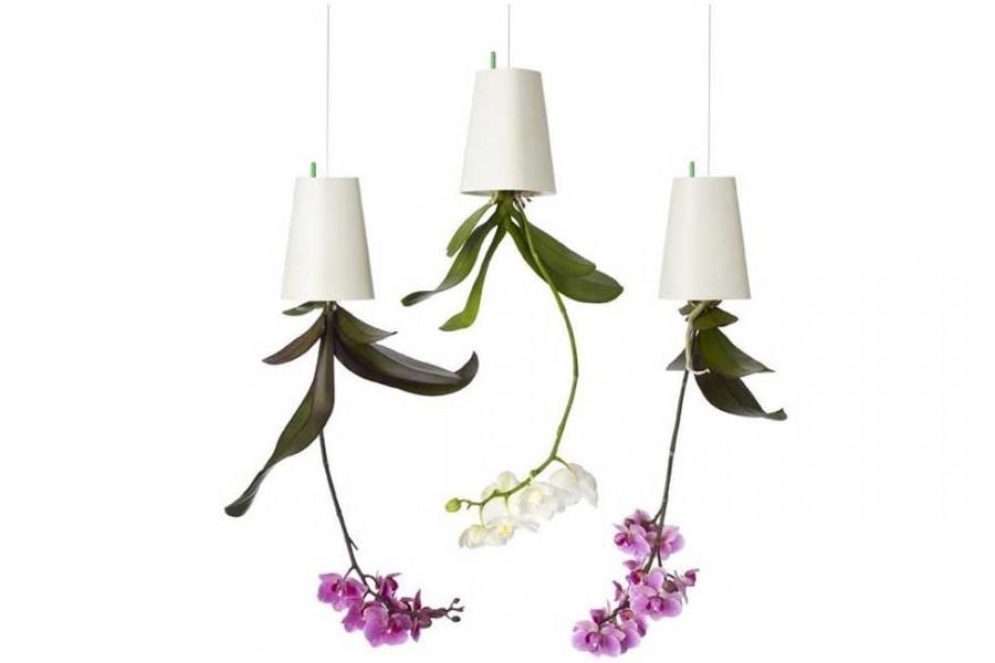 pot de fleurs l 39 envers boskke france fleur jardini re suspendu t te renvers vers le bas. Black Bedroom Furniture Sets. Home Design Ideas