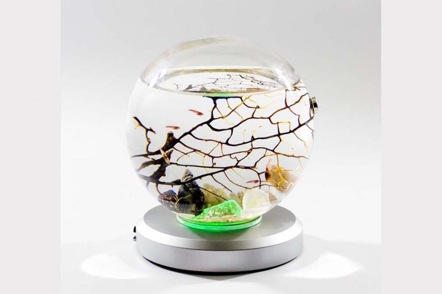 Achat nature bioglobe evivo ecosysteme marin avec for Filtre aquarium rond