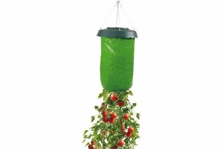 jardin suspendu pour plant tomate potager l 39 envers activit ext rieure tomate renvers. Black Bedroom Furniture Sets. Home Design Ideas